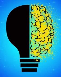 Mindworks - Da Vinci Kids