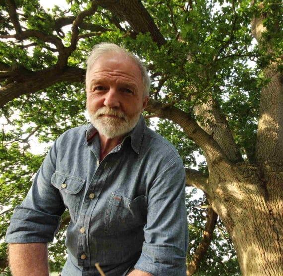 Tölgyfa - a természet legnagyobb túlélője - Da Vinci Kids